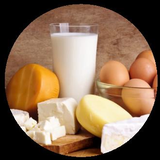 Huevos y lácteos organicos, brie blue cheese cottage babyel al horno