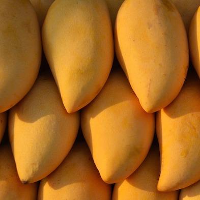 Mango manila